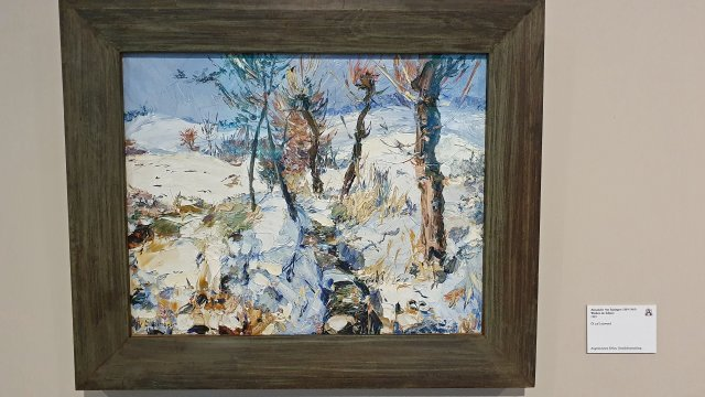 Alexander Spzinger - Ausstellung im Gartenbaumuseum