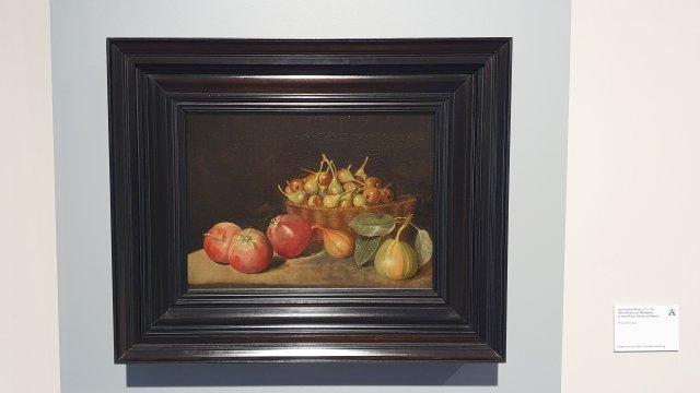 Jacob Samuel Beck - Ausstellung im Gartenbaumuseum